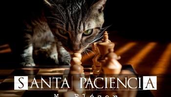 Vemos a un gato precioso, gris con rayas negras. Está contemplando muy interesado las piezas dispuestas en un tablero de ajedrez. La luz entra de forma débil, filtrada por lo que parece una persiana. El relato se titula: Santa Paciencia.