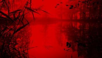 Vemos un lago lleno de plantas, es inmenso. Le he añadido un filtro rojo que hace que parezca un lago del infierno. En primer plano hay unas plantas altas que emergen del agua. El relato se titula: Sorpresa en el infierno.